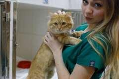 наш пациент